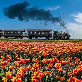Boemeltje tussen Hoorn-Medemblik van Peter Heins