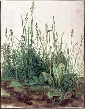 Albrecht Dürer. Le grand morceau d'herbe (vu en vtwonen)