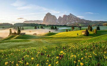Seiser Alm Zuid-Tirol van Achim Thomae