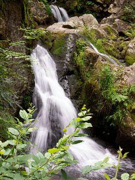 Wasserfall in den Vogesen Frankreich von Delphine Kesteloot