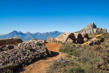 Pittoreske ruïnes van een fort - Fort de Bernia van Montepuro