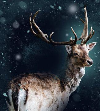 Hirsche im Winter von Photography by Naomi.K