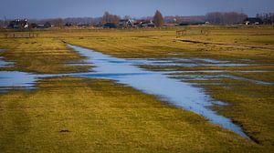 Paysage des polders néerlandais