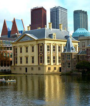 Mauritshuis Den Haag van Erwin Reinders