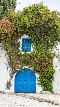 Tür mit Pflanzen in Sidi Bou Said (Tunesien) von Jessica Lokker