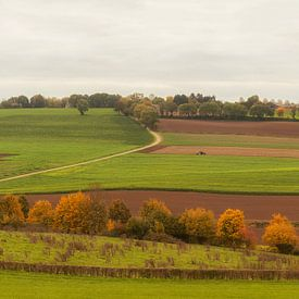 Panorama herfstkleuren in Zuid-Limburg sur John Kreukniet