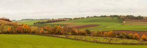 Panorama herfstkleuren in Zuid-Limburg van