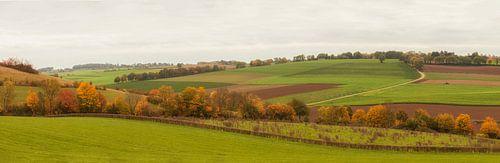 Panorama herfstkleuren in Zuid-Limburg