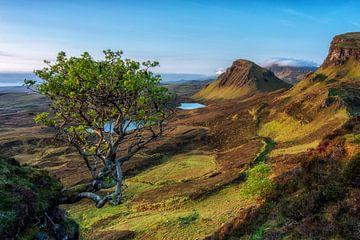 Zonsopkomst Berglandschap Quiraing in Schotland van Sander Grefte