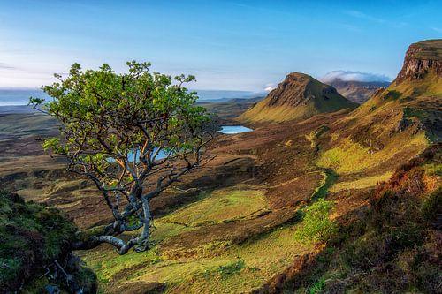 Zonsopkomst Berglandschap Quiraing in Schotland van