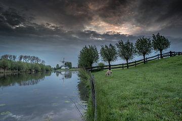 Molen de Vlinder aan rivier de Linge in de Betuwe van Moetwil en van Dijk - Fotografie