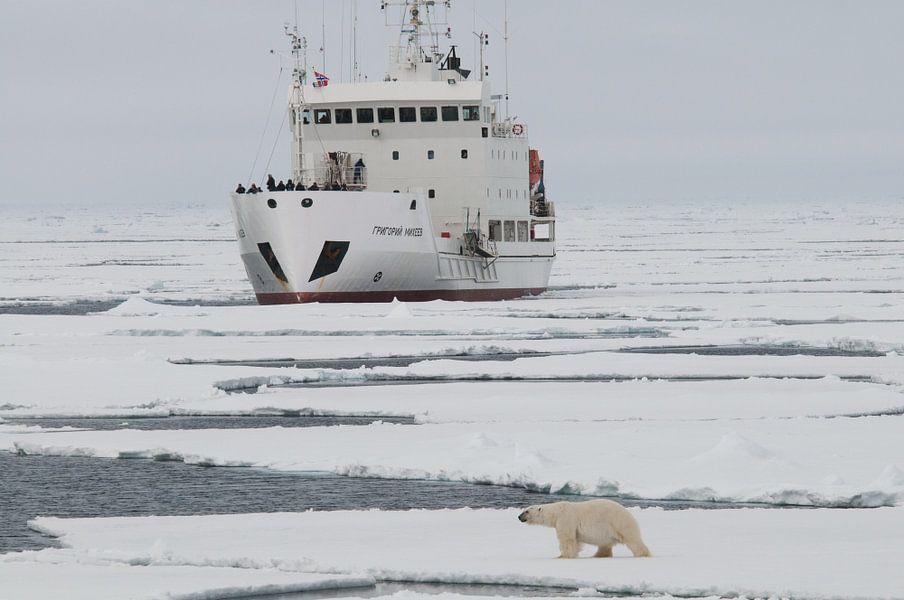 IJbeer    en expeditieschip  rond Spitsbergen