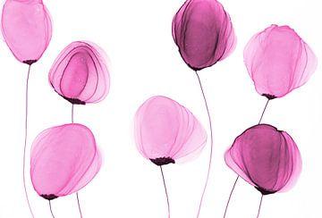 Blumen/Blüten/Blumen/ Fleurs von Joke Gorter