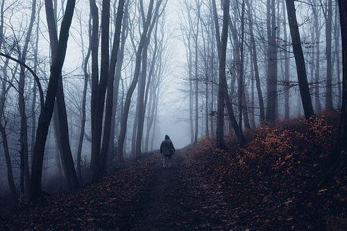 Mystischer Wald 014 van Oliver Henze