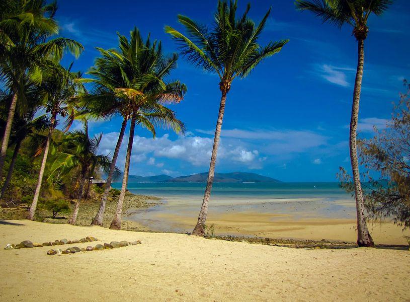 Verlaten strand op Long island, Queensland, Australie van Rietje Bulthuis