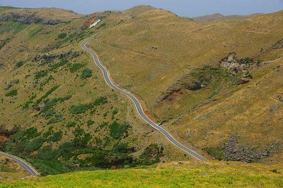 Bergweg in Madeira van Michel van Kooten