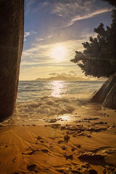 beach of natur van Silvio Schoisswohl
