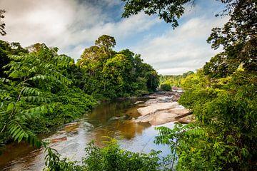 Uitzicht op de Suriname rivier bij het Awarradam jungle camp, Suriname van Marcel Bakker
