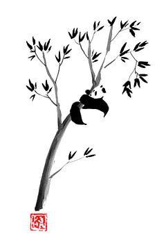 Panda in seinem Baum 2 von philippe imbert