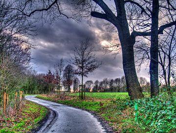 Bomen 24 van Edgar Schermaul