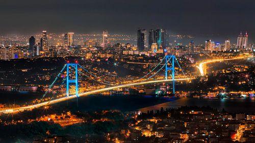 Skyline van Istanboel van Roy Poots