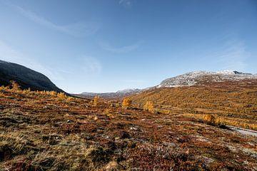 Herfst boven op het Aurlandsfjord van Mickéle Godderis