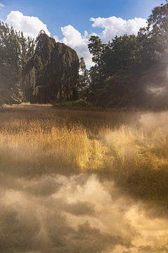 Utrechts landschap van Tot Kijk Fotografie: natuur aan de muur