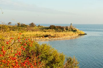 Grevelingenmeer mit Landzunge von Helene van Rijn