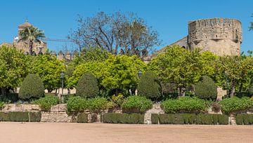 Garten mit antiker Architektur in der Nähe von Alcazar und der Mezdina von Compuinfoto .