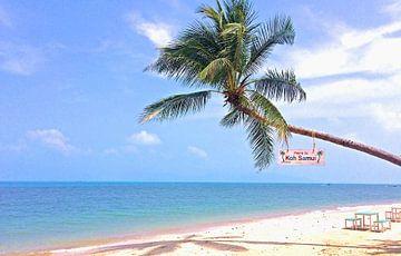 Strand in Thailand van