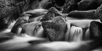 Ein Herz im Wasser von Hetwie van der Putten