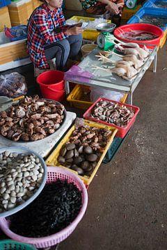 Zeevruchten- en kippenmarkt op Con Son (Vietnam) van t.ART