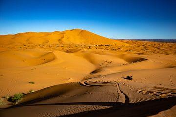 Sahara van Natuur aan de muur