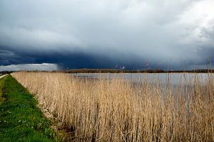 Donkere wolken boven het Oldambt