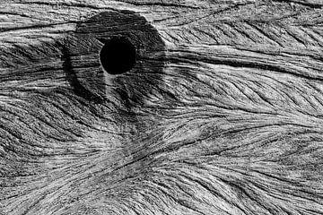 Baumstumpf mit einem Loch und alten Schichten