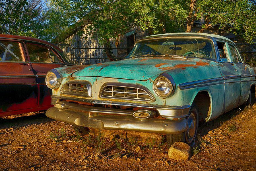 Blue Chrysler van Tineke Visscher
