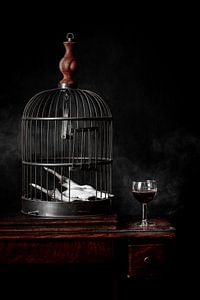 Stilleven wijn en kooi van Eddy 't Jong