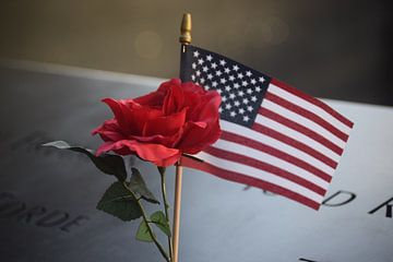 USA, NY, Amerikaanse vlag van Els Royackers