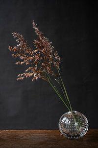 Foto print van bloeiend gras in glazen vaasje tegen donkere achtergrond van Jenneke Boeijink