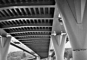 Unter der Brücke von Joel Houbrigts
