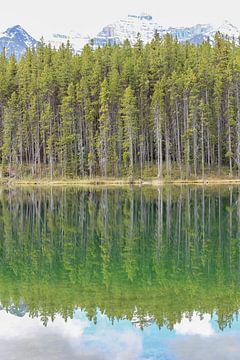 Spiegelbeeld Canadees meer van Map of Joy