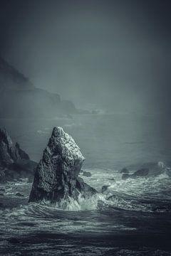 Last Rock Standing van Pascal Deckarm