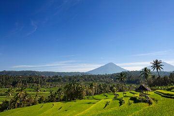 Agung vulkaan tijdens de zonsopgang, op het eiland van Bali in Indonesië van Tjeerd Kruse