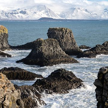 Küste Islands im Winter von Andreas Hackl