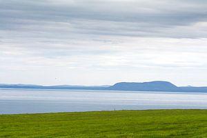 Het gras is altijd groener in IJsland van Vera Vondenhoff