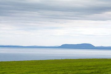 Het gras is altijd groener in IJsland von Vera Vondenhoff