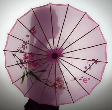 Roze silhouet van Annemarie Rulos-van den Berg