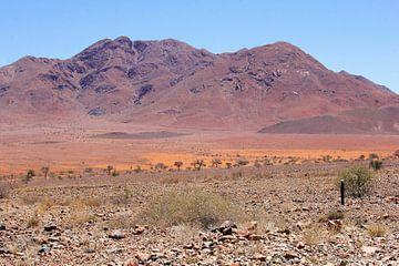Surreale Betrge Landschaft, Namibia von Inge Hogenbijl