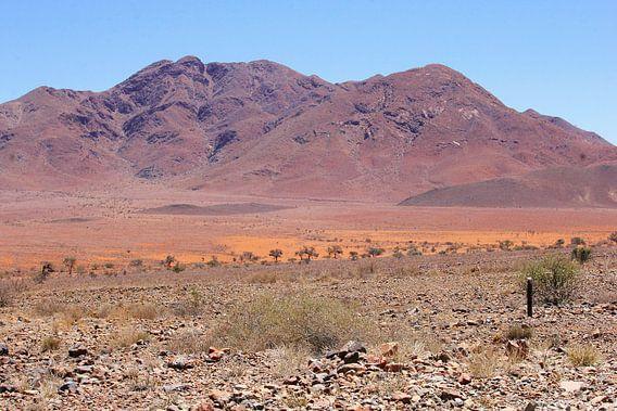 Surrealistisch berglandschap, Namibie