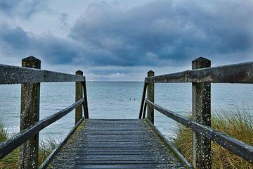 Chemin vers la mer sur Joel Layaa-Laulhé